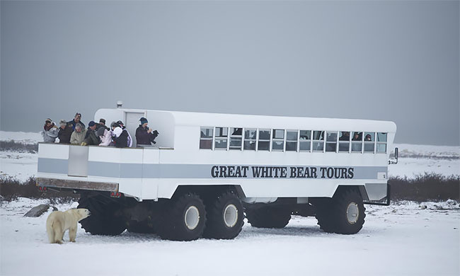 Первый арктический отель на колесах